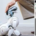 i-robot-piu-avanzati-e-costosi
