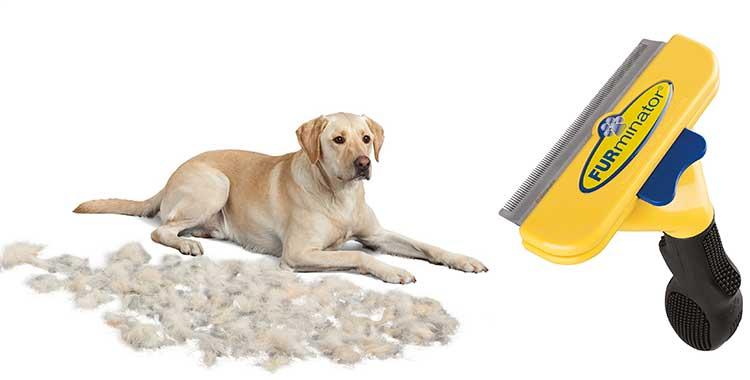 spazzola furminator per animali