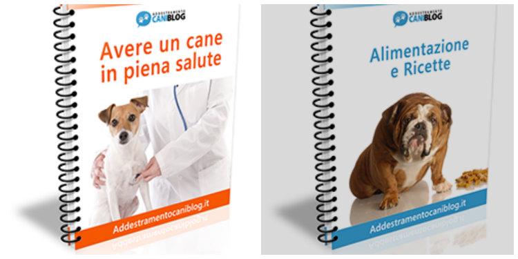 corsi addestramento cani costi