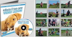 Educa Il Tuo Cane! Il Video Corso Per Addestramento Cani (12 Video)