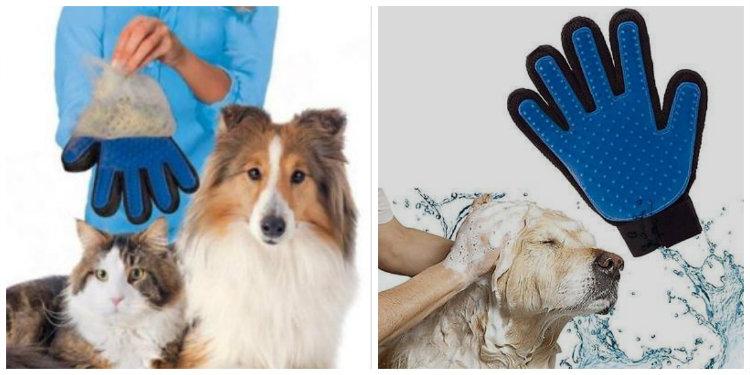 guanti per il pelo del cane