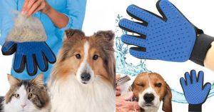 Guanto Magico: 3 (Semplici) Steps Per Togliere Il Sottopelo Del Cane
