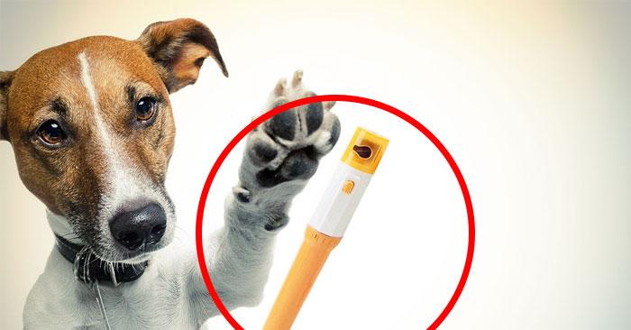 rody-nail-clipper-cani