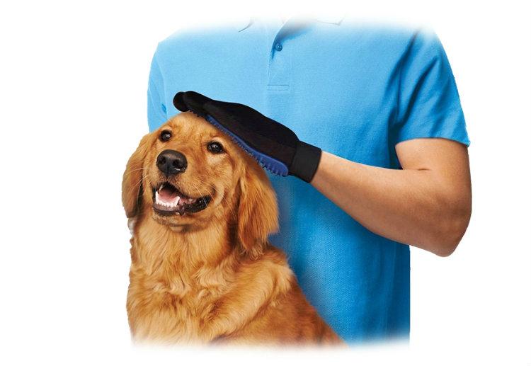 spazzole per cani pelo medio
